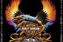 Harley & Riding , Trucks & Cars ....