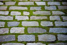 Garden paths...