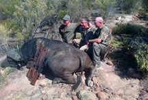 Hunting in Africa