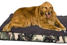 Pet Products - Dog Beds