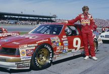 Coors Racing /Bill Elliot