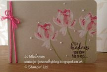 Stampin' Up! - Lotus Blossoms / by Kim Miller