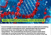 Study at Jacobs University | Riya Education