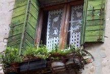 Windows / by Macan Rosabal