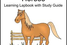 Lap book ideas for Gha