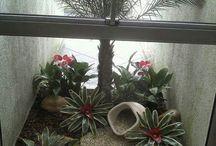 Jardines patios interiores