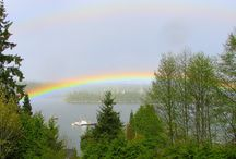 Rainbows / by Darla Andresen