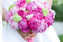 Pink & Green Wedding Ideas / Pink & Green make an amazing color combination, particularly for weddings.