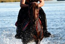 Favorite guys with horses . . .