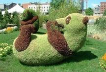 Sculpture végétal