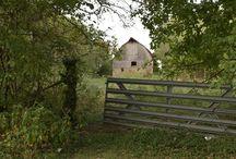 Rocky Hedge Farm Life