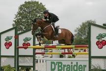 Horse Show Destinations