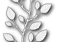 Minták-növények