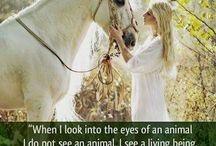 animal lovelies