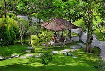 Royal Garden / Beautiful green landscape