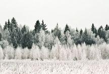 Color: black, white, gray