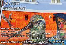 Valparaiso / La magia de Valparaiso al estilo BioTourist