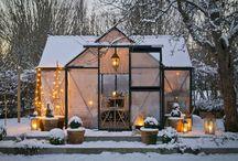 Vinterhager & Drivhus