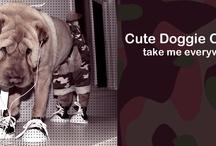 Wrinkley Dinkley Sharpeis / my favorite breed always / by Cindy Sugai