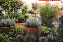 Jardin con barriles