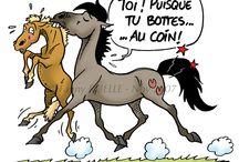 poneys!