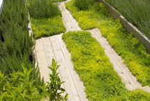 Gardens & Outdoor Spaces / Ideas for gardens and outdoor spaces