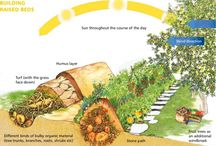 """Permaculture / """"Permaculture (the word, coined by Bill Mollison, is a portmanteau of permanent agriculture and permanent culture) is the conscious design and maintenance of agriculturally productive ecosystems which have the diversity, stability, and resilience of natural ecosystems. It is the harmonious integration of landscape and people — providing their food, energy, shelter, and other material and non-material needs in a sustainable way. Without permanent agriculture there is no possibility of a stable social order."""" - Dan West / by Denice Bezoplenko"""