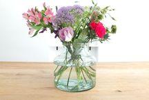 Blumen | Flowers ♡