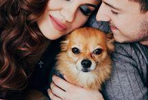 Семейные фотосесии с животными