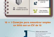 curriculum vitae español plantillas