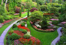 jardines ingleses