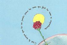 :: Le Petit Prince ::