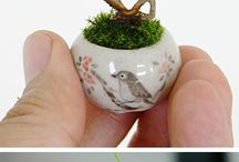 MINIATURA BONSAI