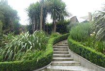 garden kelly & stu / by Rochelle Rochelle
