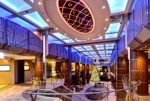 Cruise Liner and Ship Fit-out / Discover Lindner Cruise Liner and Ship Fit-out