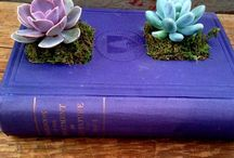 Old books and plants