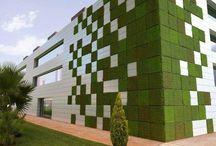 Edifici sempre verdi
