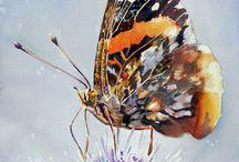 mariposas arte