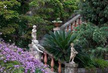 villa Pergola Alassio . fioriture
