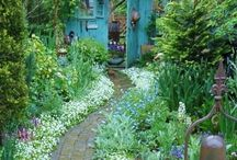In The Garden / Gardening inspiration and all things green!