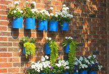 Garden ideas / Garden decoration ideas and diy crafts