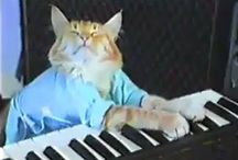 Music for our Furry Friends / Songs inspired by, written about, featuring or performed by our favorite furry friends / by ASPCA Pet Health Insurance