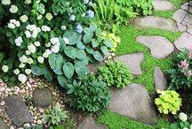 Kövek a kertben