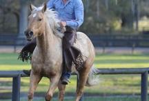 Natural Horsemanship <3