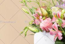 Kwiaty / Kwitnące piękno