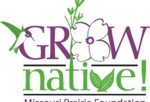 Grow native Missouri / Native Missouri plants
