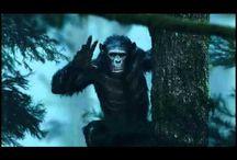 ((GRATUIT)) Regarder ou Télécharger La Planète des singes Streaming Film en Entier VF Gratuit