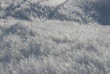 Tablou de iarnă