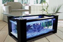 akvárium ötletek széles tárháza.