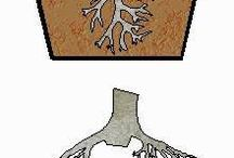kraceni korenu